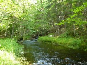 85 Acres Marion Bridge Trout Brook Retreat Minutes to Sydney