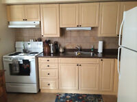2 bedroom new apartment in Simcoe--great location