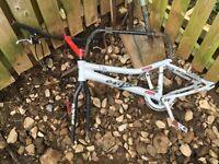 Onza t-Vee trial bike frame