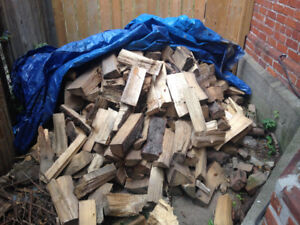 Cut and Dried Spruce Fire Wood