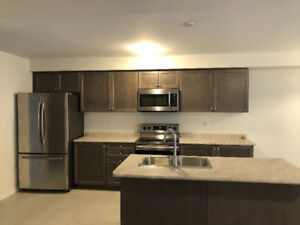 Beautiful newly built Townhouse for rent in Brantford