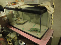 ~50 Gallon Fish Tank with All Accessories