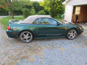 2000 Ford Mustang GT Cabriolet