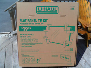 Flat panel TV moving kit