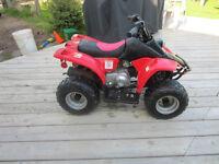 Kids 4 wheeler (Masstown)