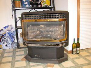 Regency freestanding  gas fireplace Prince George British Columbia image 1