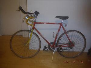 Bicycle de cross professionnel