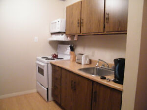 1 bedroom fully furnished apartment nightly rentals