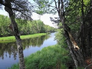 Riverfront acreage with beautiful fields