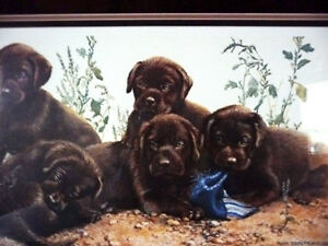 """Hand Signed Lithograph by Amy Brackenbury """"Chocolate Cluster"""" Stratford Kitchener Area image 2"""