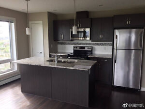 Downtown beautiful apartment for rent ,June Free!