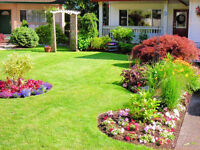Lawn + Landscaping **COUPON** = Spring & Yearly Cleanup Package