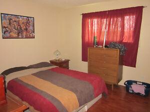 5 Bedroom Bungalow in quiet area of Wildwood, AB Edmonton Edmonton Area image 6