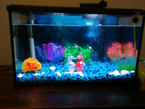 10 Gallon Fish Tank and Extras