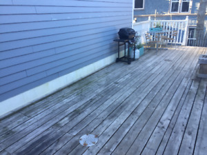 Looking for Rooomate Luxury apartment South End Halifax
