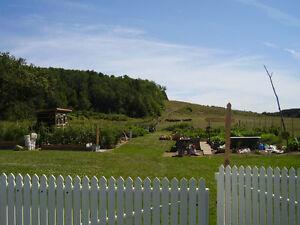 maison 45 min de Québec, très rare, grand jardin potager