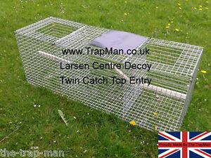 Magpie trap - Larsen trap SECONDS Twin top CATCH UK  The TrapMan  FREE DEL