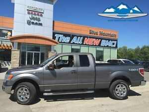 2009 Ford F-150 XLT  ACCIDENT FREE LOCAL TRADE, 4WD, BLUETOOTH/U