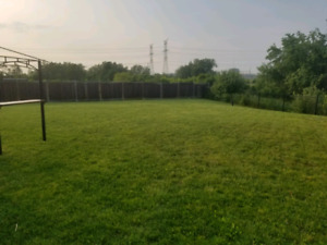 LAWN MOWING, TRIMMING, HEDGING, WEEDS, LAWN REHAB!