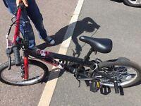 Apollo Vendetta BMX Bike 20ins