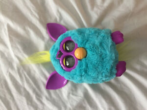Blue and pink furby.