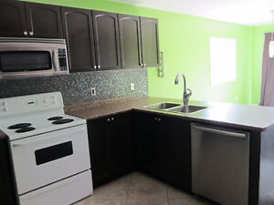General Contractor - DR Renovation Solutions Kitchener / Waterloo Kitchener Area image 3