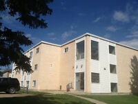 1 BD RENOVATED ADULT apartment ONE block to NAIT 11916-105 S
