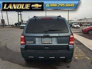 2011 Ford Escape XLT   LOW KMS-FAMILY VAN-JUST ARRIVED