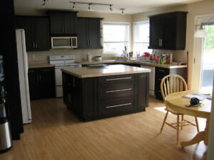 One Room For Rent In Silverspring Area!!!