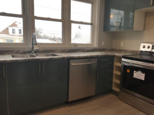 BRAND NEW & GORGEOUS - UPPER WITH 2 BEDROOMS IN HILL PARK