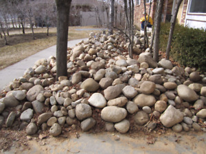 Looking for large rocks/fill