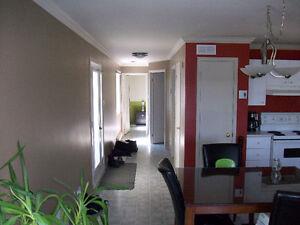 maison mobile (modulaire) avec une extention a déménager