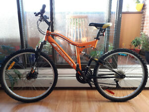 Adult Supercycle for Sale