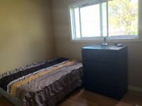 Furnished room for rent downtown