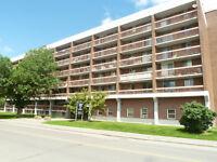 St Laurent Blvd & Smyth Rd - 1 Month Free - Renovated Suites!