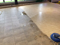 PROFESSIONAL CARPET, UPHOLSTERY & TILE/GROUT CLEANING