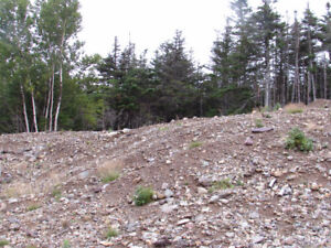 159 A COUNTRY PATH, HOLYROOD..BACK LOT..PRIVACY GALORE!!