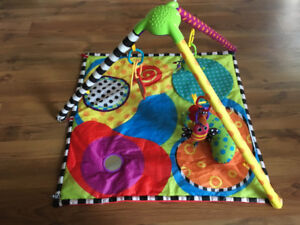 Baby play mat/activity mat