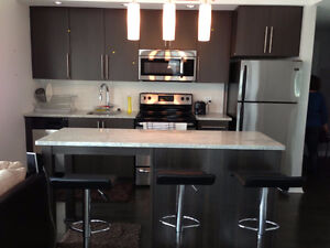 2 bedrooms, 2 bathrooms Luxury condo  Downtown Ottawa  for sale