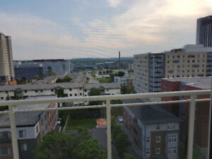 Sublet: 1 Bedroom Condo in July and August