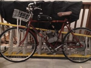 Moped bicycle