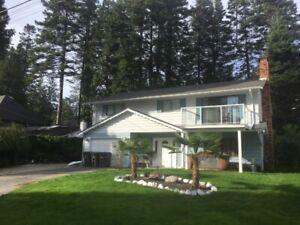 Nov 1st. Furnished 4 bed/2bath suite of house Ocean Park-Wt Rock