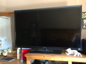 46 inches Sony Bravia Smart TV with Super Mario Bros.Wii