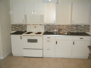 Newer Glenmore Basement suite, central location.