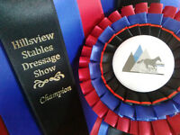 Dressage Show Series @ Hillsview Stables