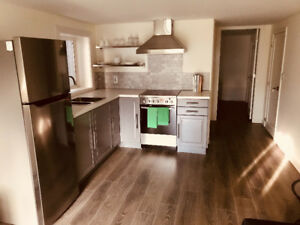 Furnished 1BR in the heart of kits