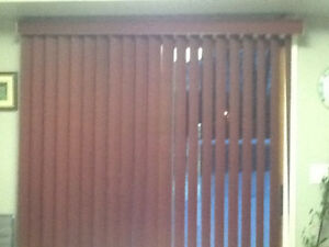 Patio Door Blind