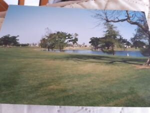 Maison mobille sur le terrain  golf  Orange Brook  Hollywood