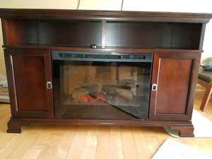 Dimplex electric fireplace unit