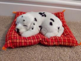 Puppy on blanket sound sensor
